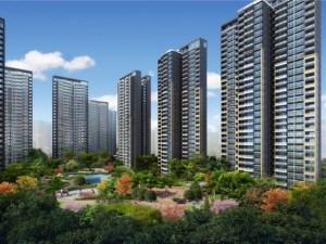 深圳京基御景中央花园二期新房楼盘图片