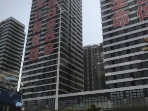 深圳今日国际新房楼盘实景图15